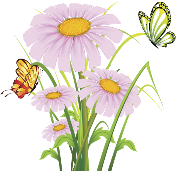 Daisy clipart plant insect. Download free render