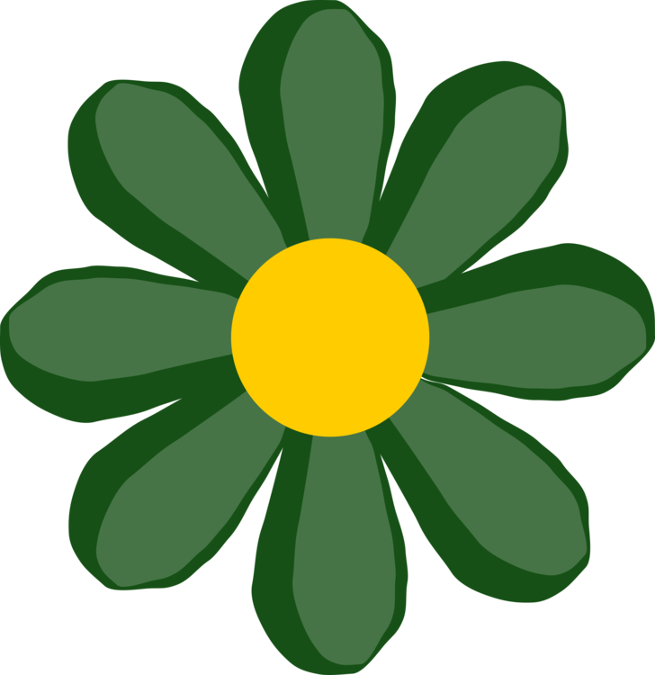 Bud drawing daisy. Flower green common yellow