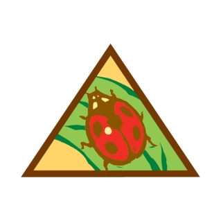 Daisy clipart plant insect. Award and badge explorer