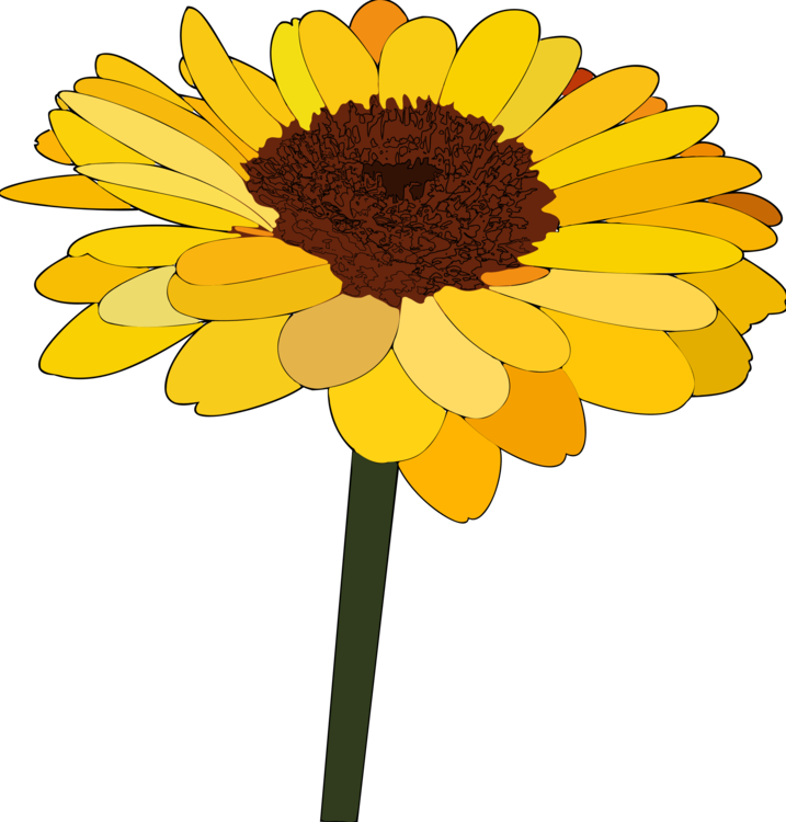 Daisy clipart sunflower. Common cartoon drawing family