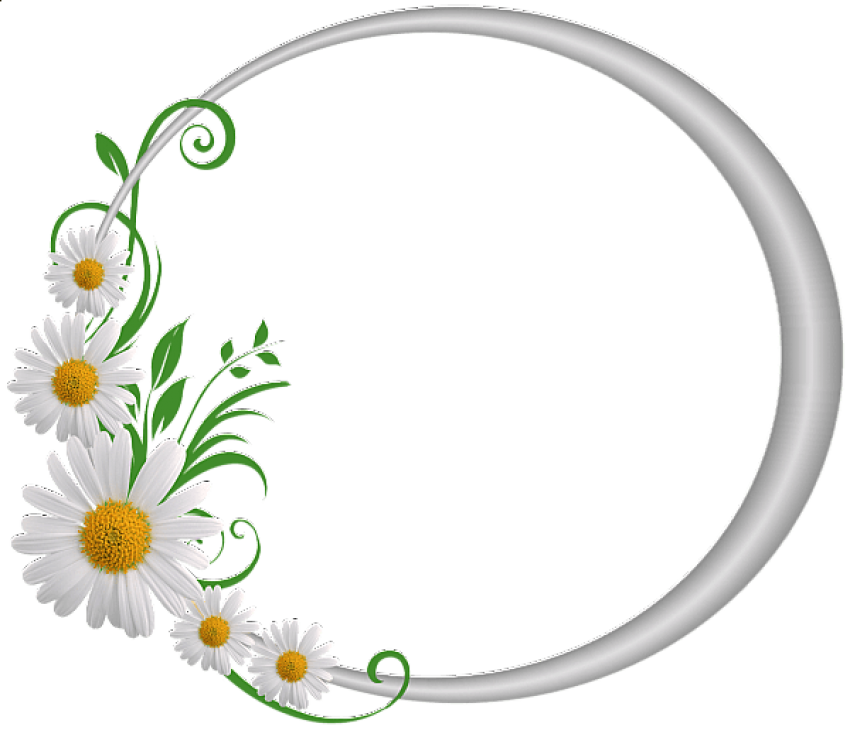 Daisy clipart vine. Silver round frame with