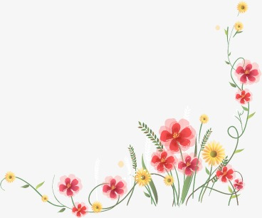 Daisy clipart vine. Leaf png and vector