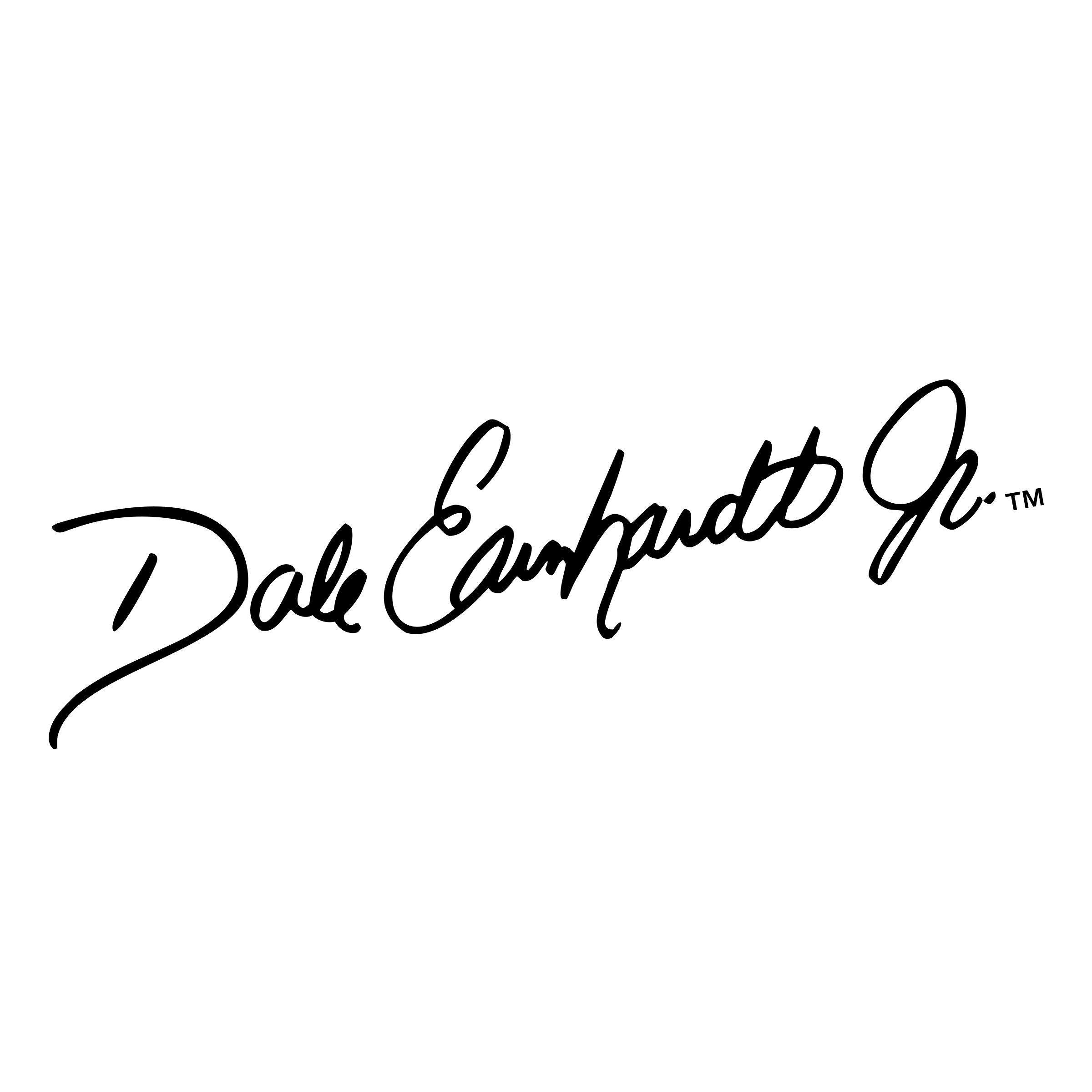 Dale earnhardt jr signature png. Logo transparent svg vector