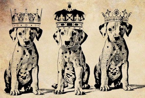 Dalmatian clipart crown. King puppies dog printable
