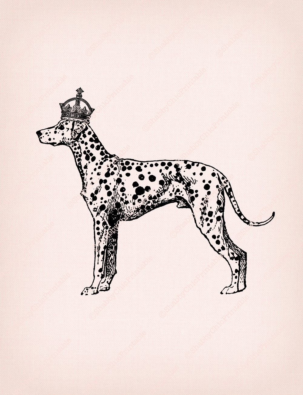 dalmatian clipart crown