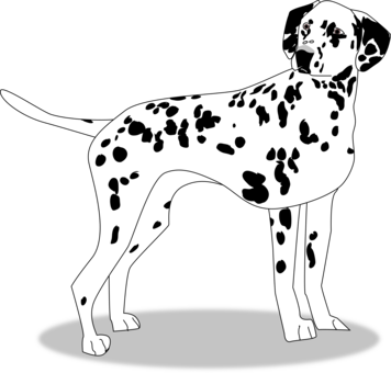 Dalmatian clipart puppy dog tail. English cocker spaniel golden