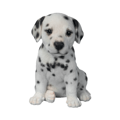 Dalmatian clipart sad. Puppy face transparent png