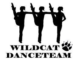 High kick line dance. Dancer clipart danceline banner free stock
