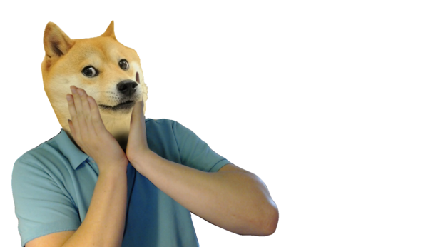 Doge face png. How my did so