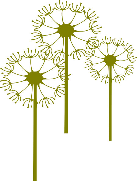 Dandelion clipart flower side. Clip art at clker