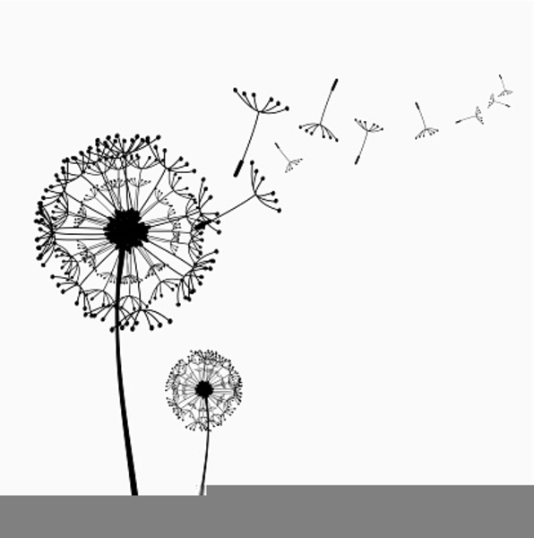 Free flower images at. Dandelion clipart vector royalty free