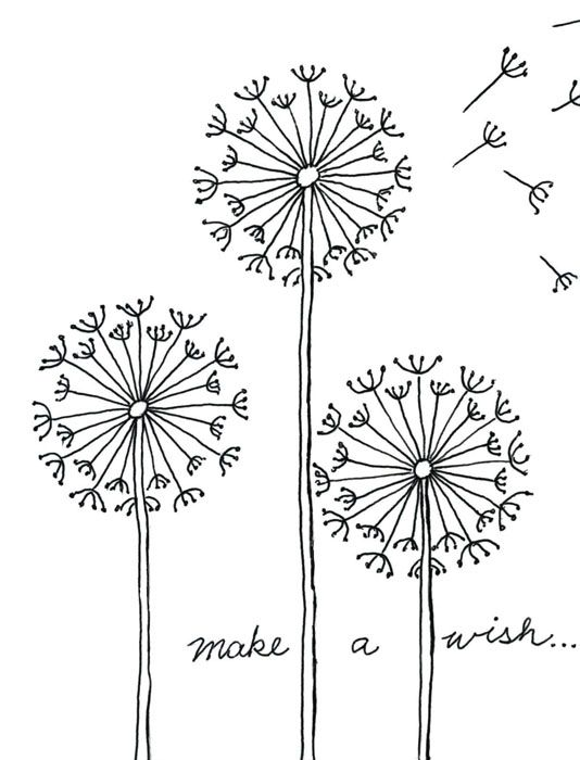 Draw a pinterest contact. Dandelion clipart cute png royalty free stock