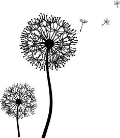 Stock vector abstract flower. Dandelion clipart cute clipart free download