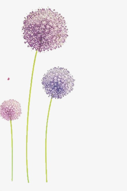 Dandelion clipart purple. Dreams plant dream png