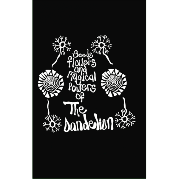 Dandelion seed png. The seeds flowers magical