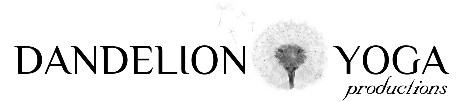 Dandelion transparent scattered. Why the yoga productions