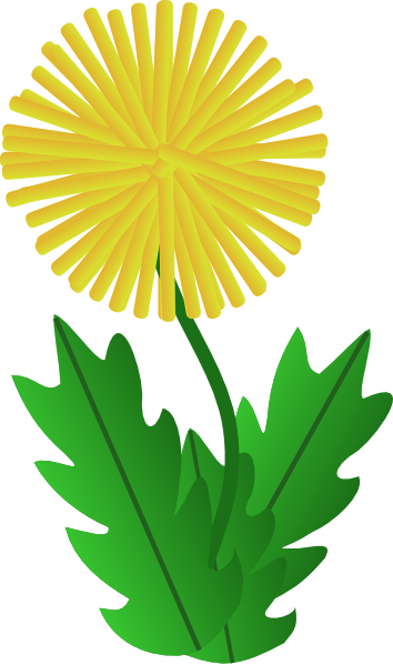 Dandelion transparent svg file free. Pin by kimberly wies