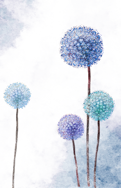 Drawing dandelion aesthetic. Popular and trending stickers