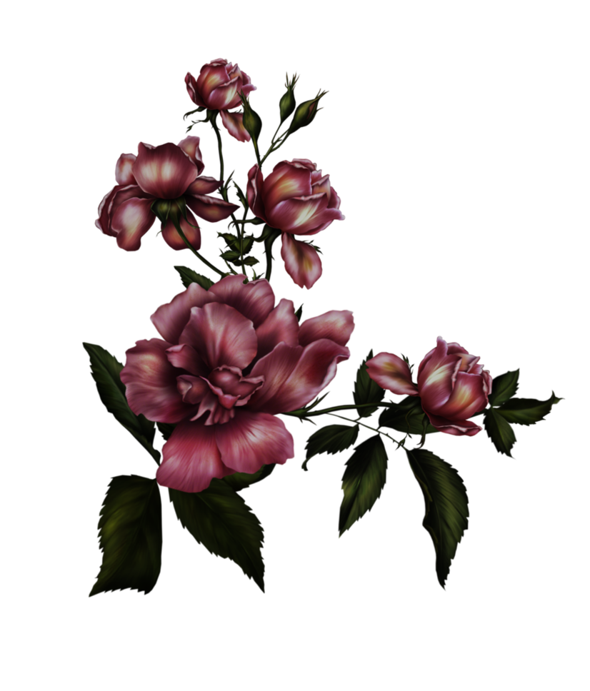 Dark flower png. Gothic by collect and