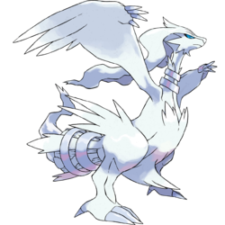 Zapdos drawing noble. What are the top