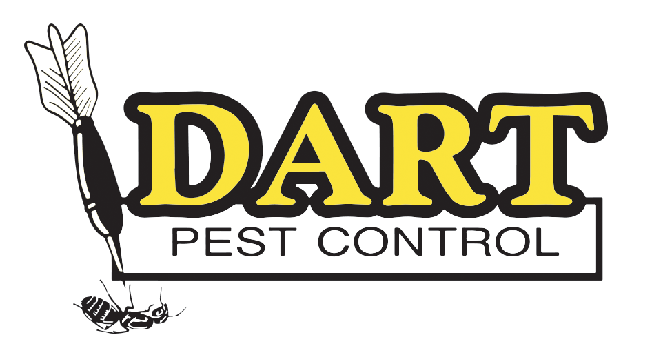 Darts clipart absolutely. Home dart pest control
