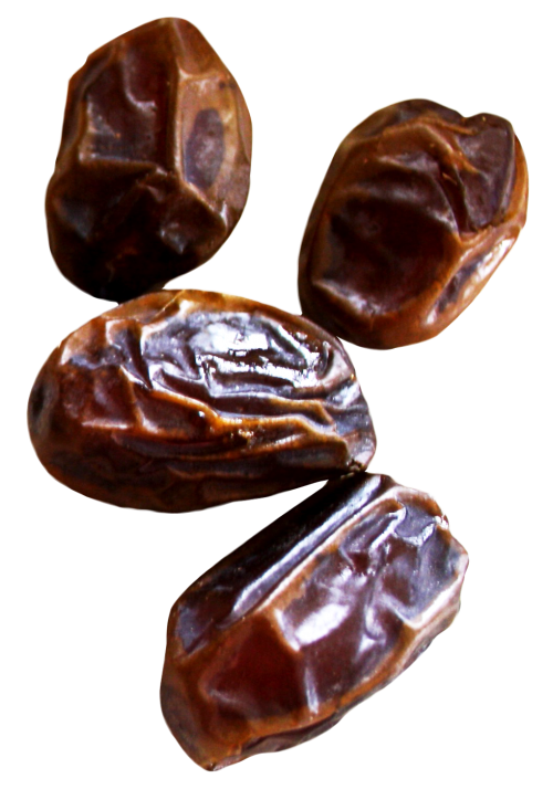 Date palm png. Image pngpix download