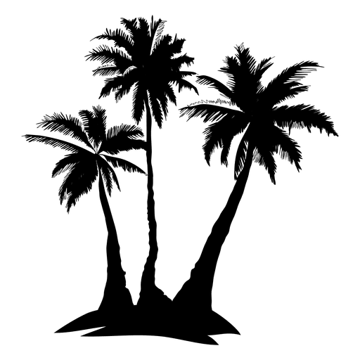 Date palm png. Complex tree silhouette transparent
