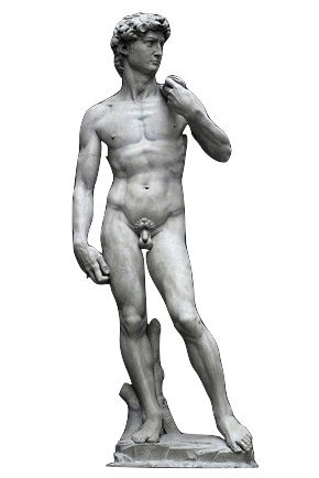 David statue png. Bernini and why he