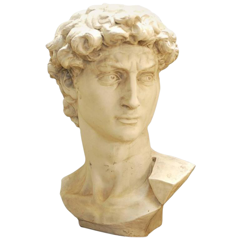 David statue png. Michelangelo s monumental bust