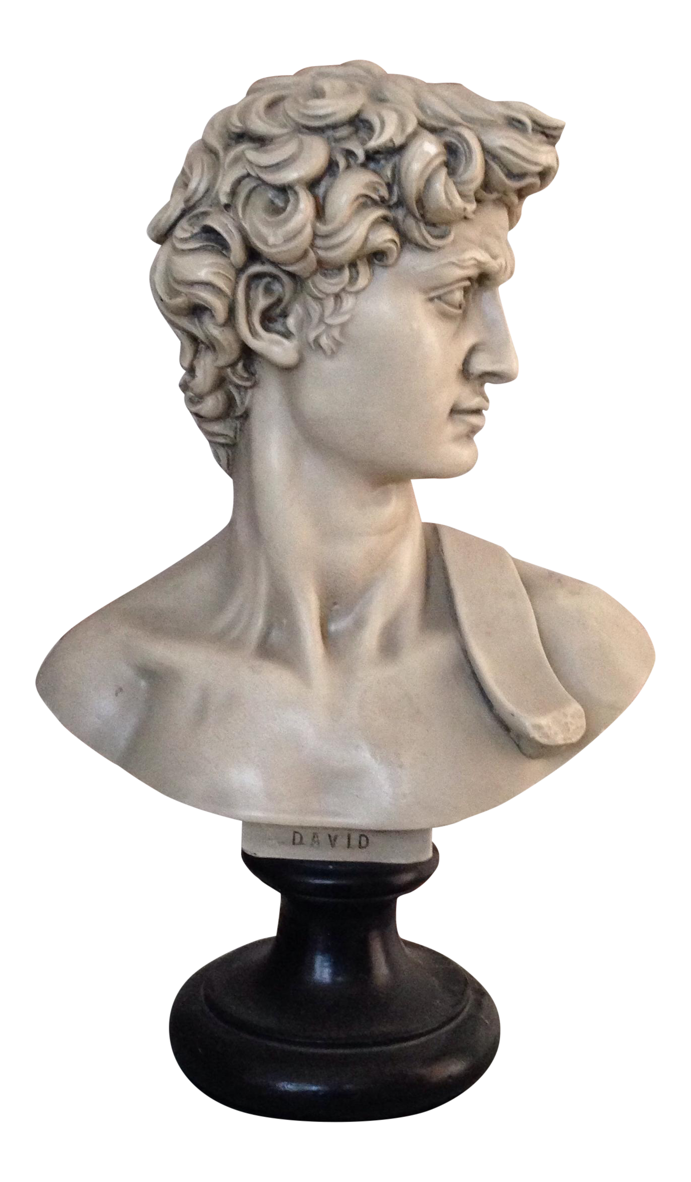 David statue png. Plaster bust of chairish