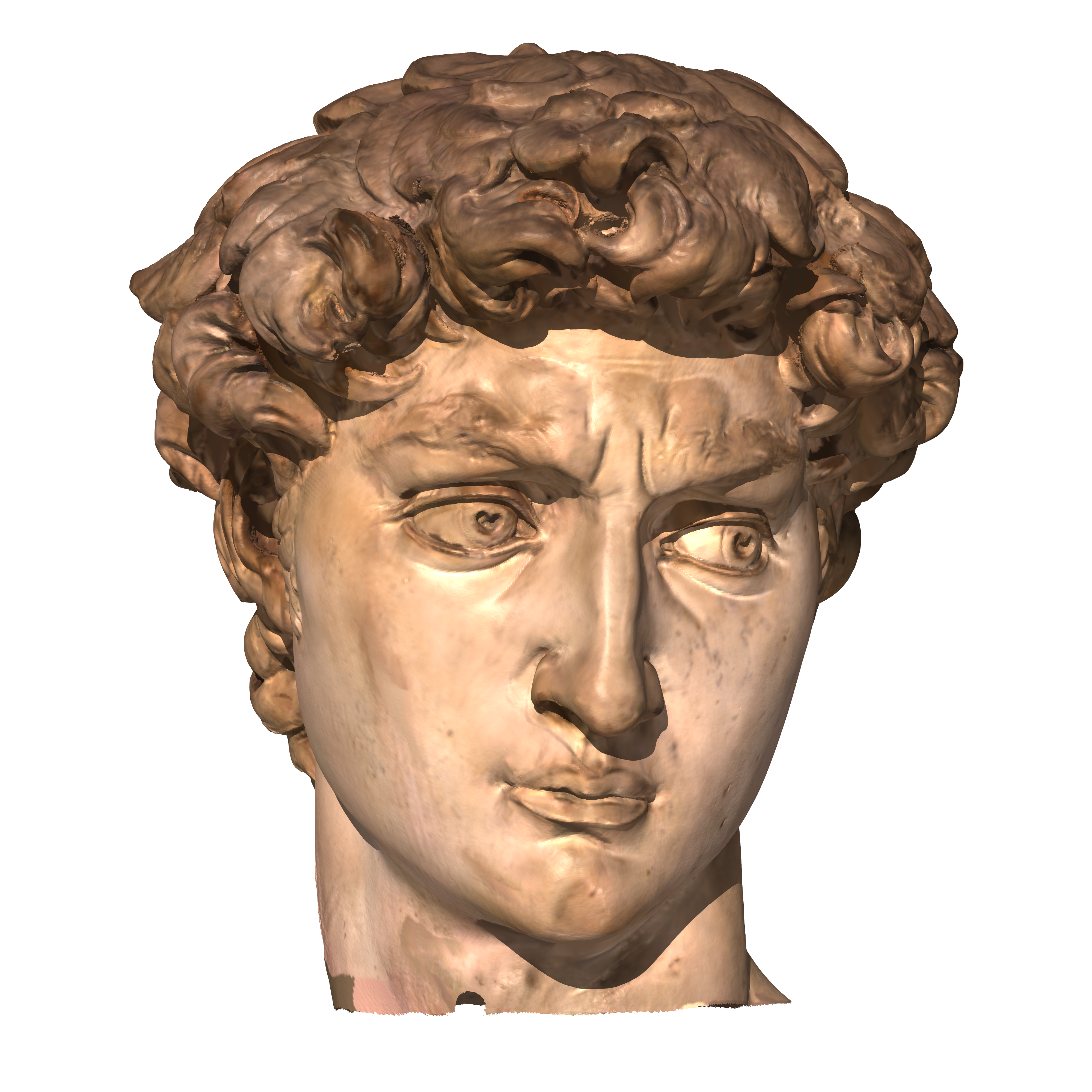 David statue png. Michelangelo head transprent free