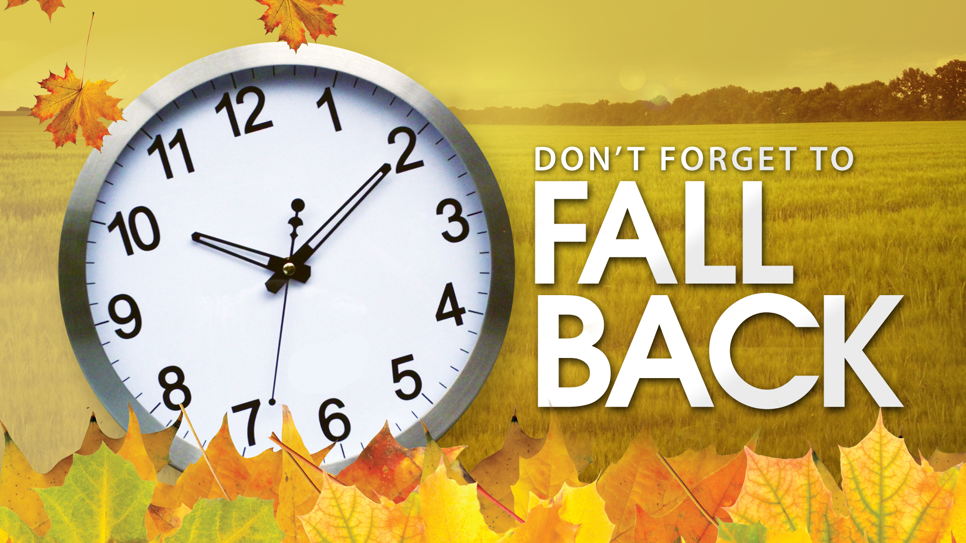 Daylight savings clipart november 5. Fun facts about