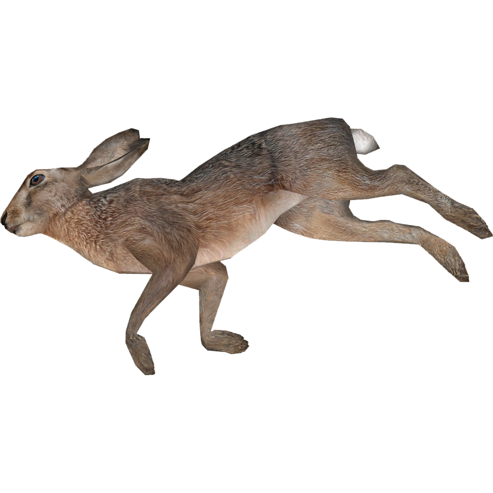 dead rabbit png