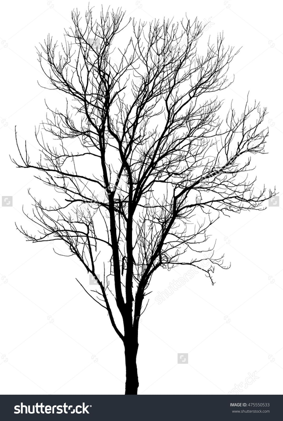 Dead clipart apple tree. Silhouette dry or on