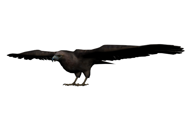 Dead crow png. Image halc n red