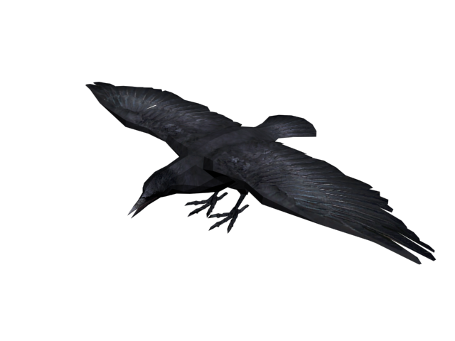 Dead crow png. Red wiki fandom powered