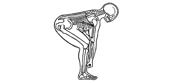 Deadlift drawing. Mechanics the obvious can