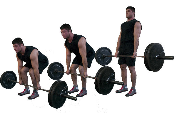 Deadlift drawing conventional. What is your favorite