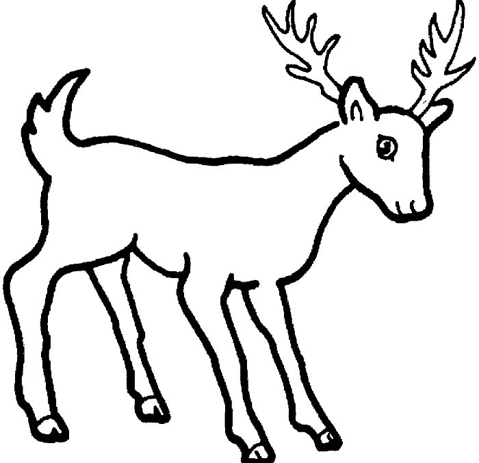 15 Raindeer Drawing Coloring Page For Free Download On Ya Webdesign