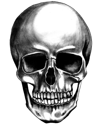 Death skull png. Download free images the