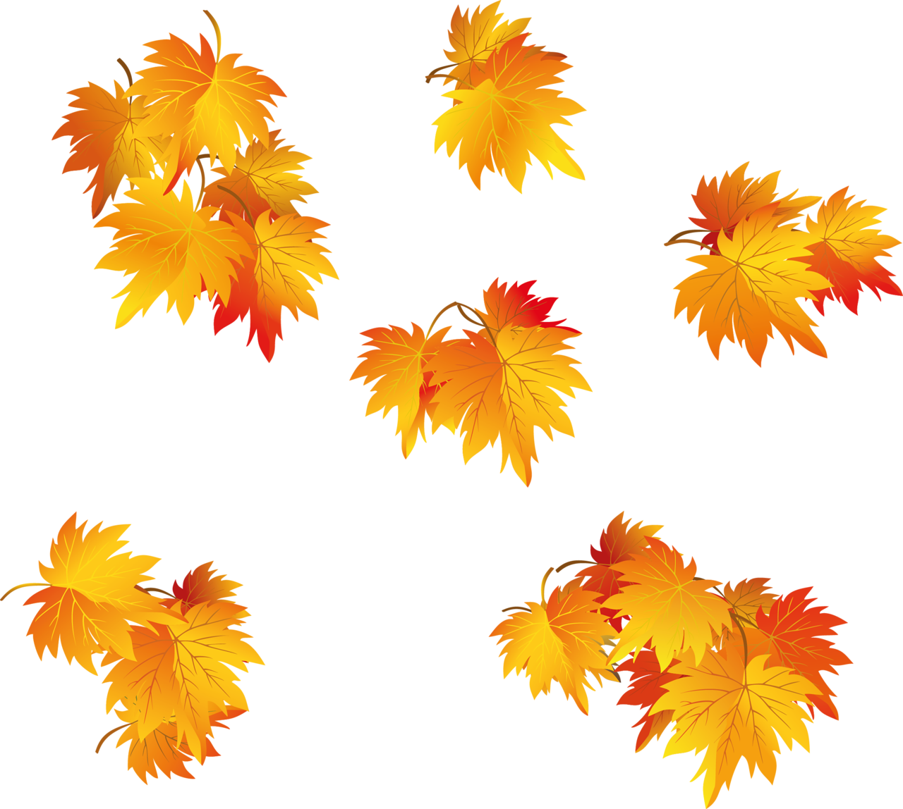 Fall leaf vector png. Leaves autumn background