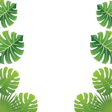 Greenery vector forest border. Aloha flowers tropical leaves
