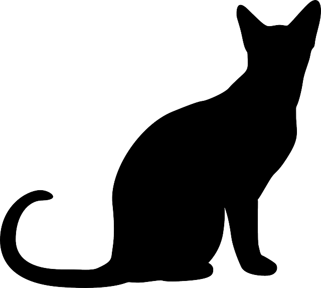 Vector cats simple. Free image on pixabay