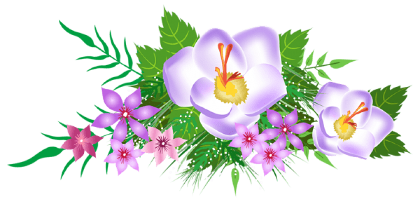 Decorative clipart decorative element. Download flowers png photo