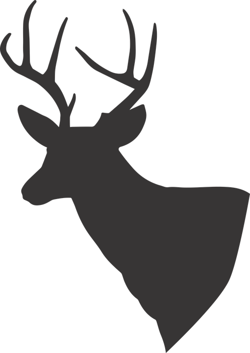 Group free vector graphic. Deer antlers with bow silhouette png picture black and white download