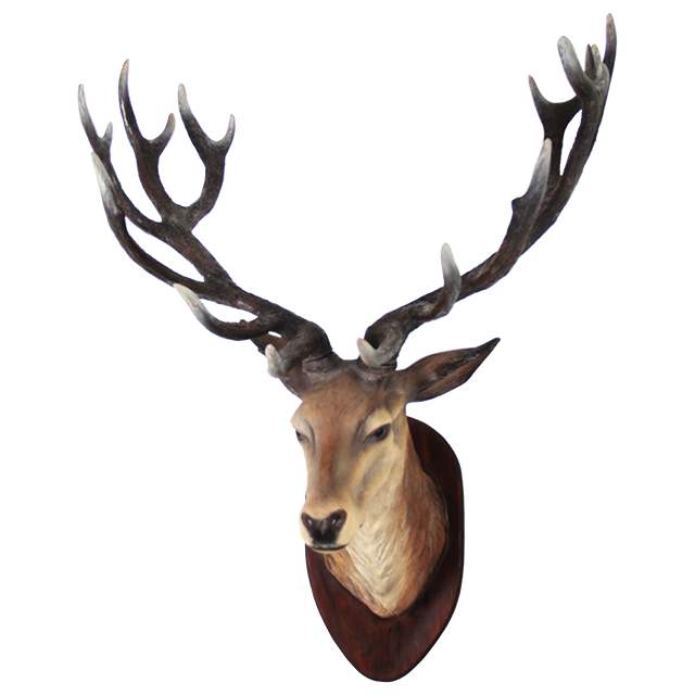 Deer head png. Transparent image mart