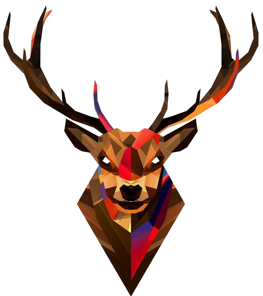Deer head png. Image transparent background animal