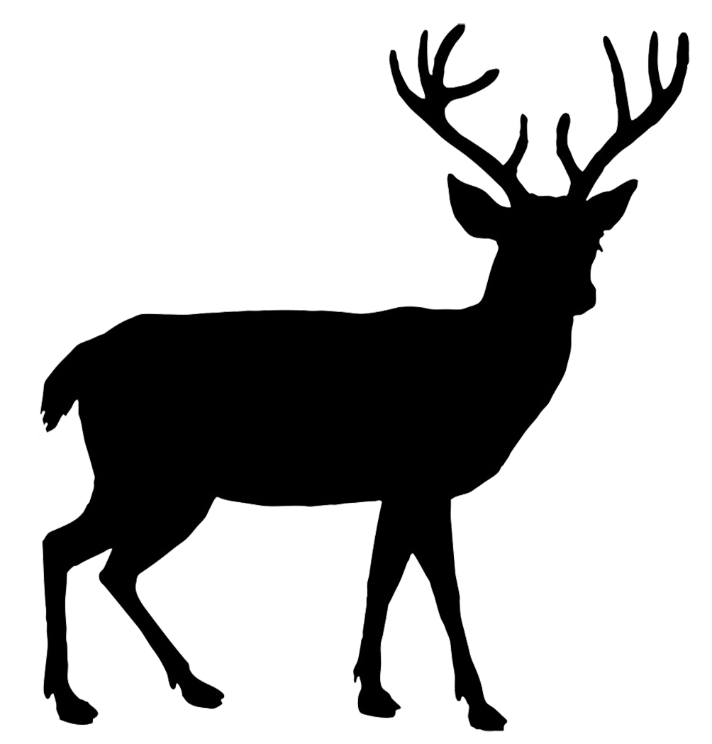 Hunter vector elk hunting. Red deer silhouette at