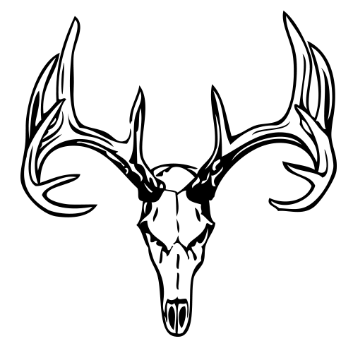 Deer skull decal png. Free drawings of skulls