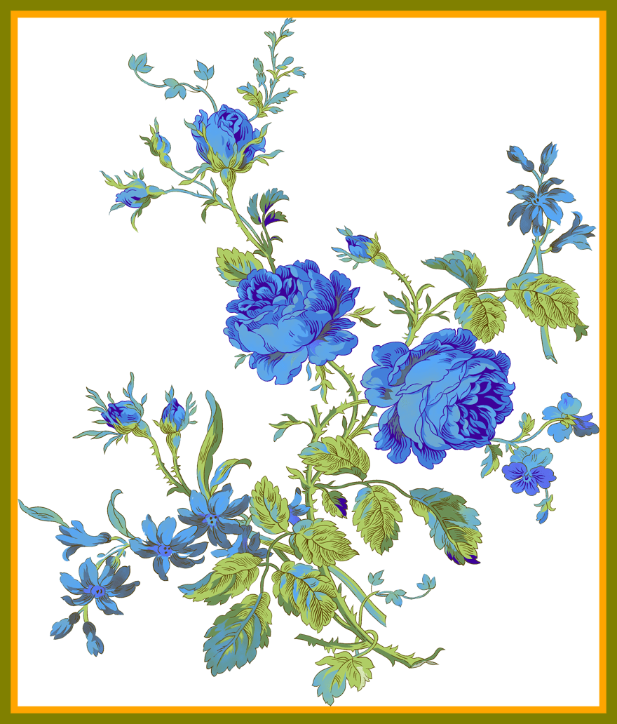 Delphinium drawing flower. Astonishing cvety formate png